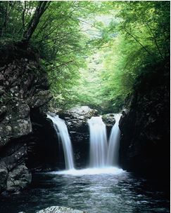 小坂の滝めぐり1