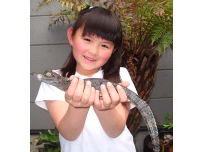日替わりでさまざまな爬虫類との記念撮影を楽しめる