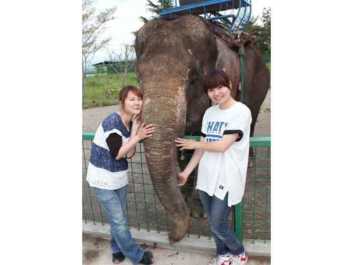 ゾウと一緒に記念撮影をしちゃおう☆