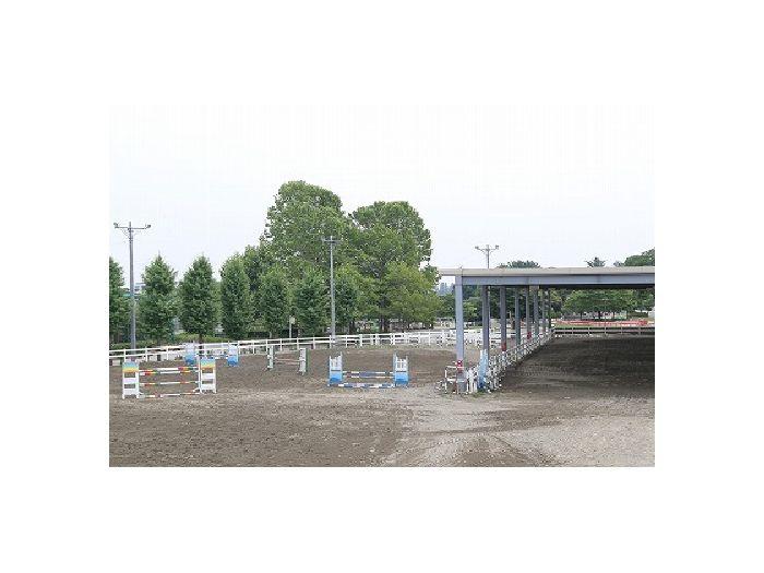 馬が約150頭いるクラブ