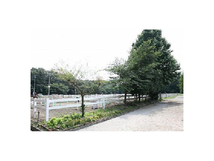 桜並木と緑に囲まれた静かな環境