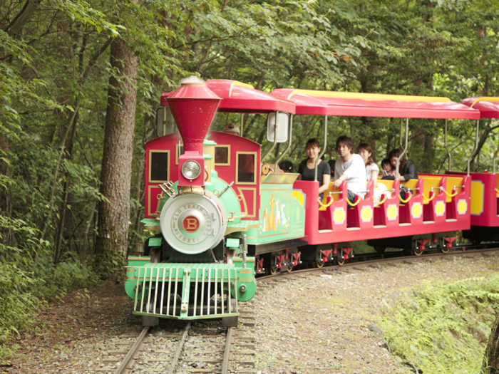 汽笛を鳴らしながら走るSL森林鉄道
