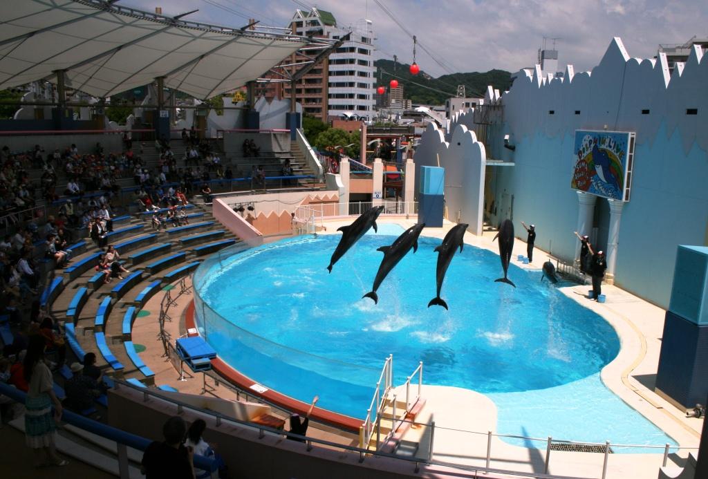 須磨 海浜 水族 園 神戸市立須磨海浜水族園 - Wikipedia