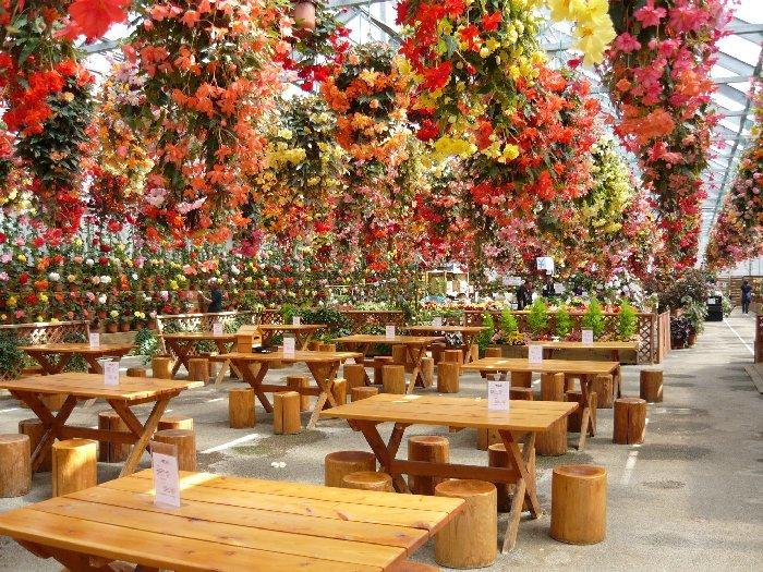 花に囲まれてくつろげる休憩所