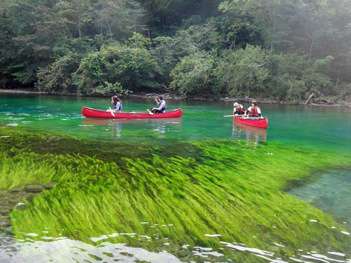 鮮やかな水の色に感動