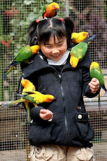 小鳥との触れ合いも♪