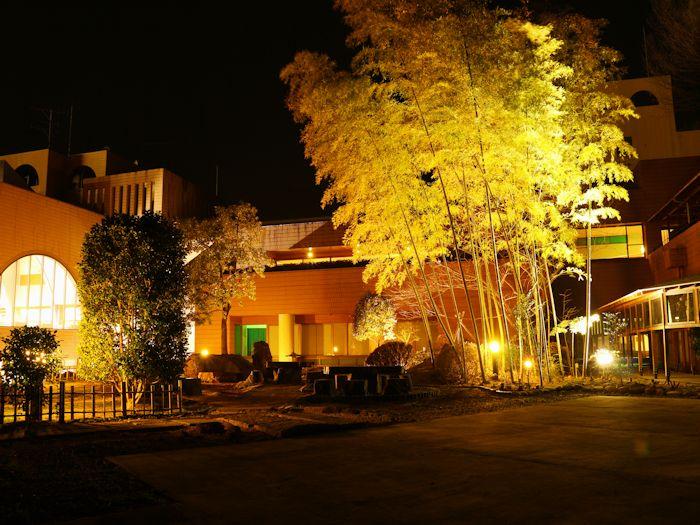美しい中庭、夜はライトアップ