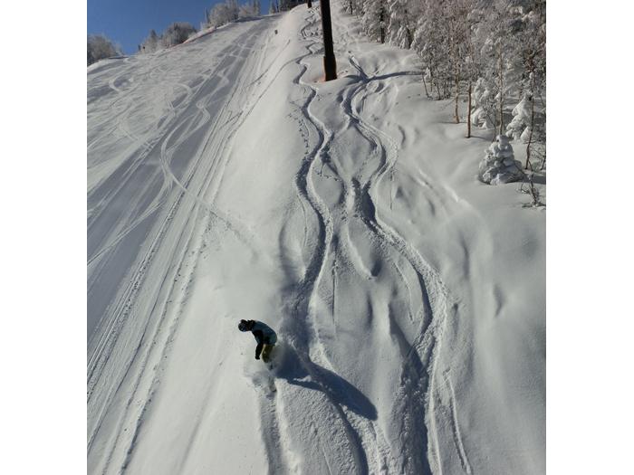 雪原を一気に滑走