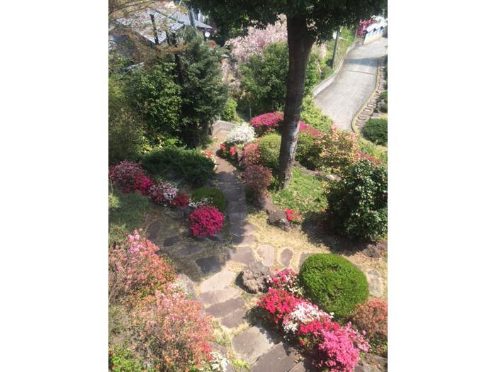 庭園にツツジ4000株を植栽