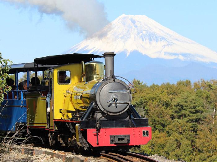 ロムニー鉄道と富士山