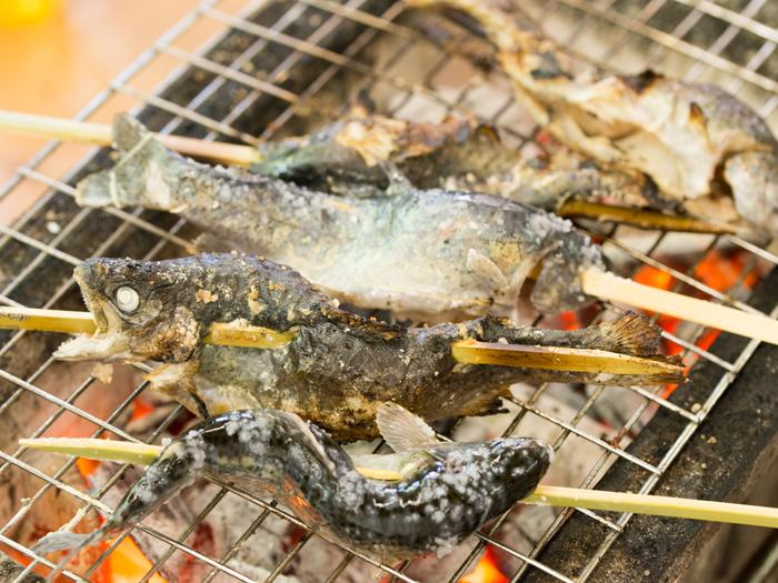 炭火で魚を塩焼きにできる