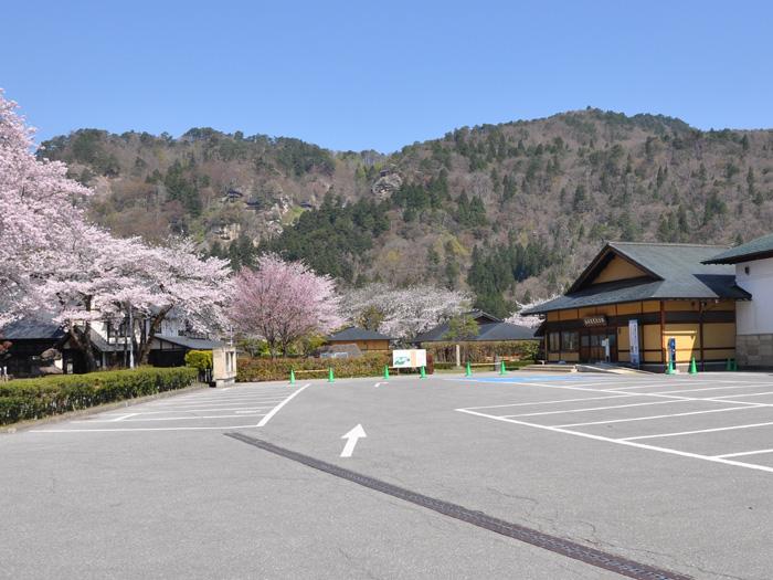 春の桜は見ごたえがある