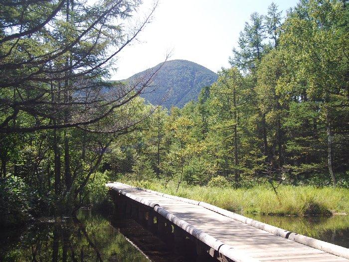 のんびり気ままな自然探索が楽しめる自然園池