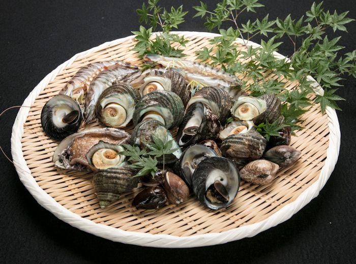 サザエ・ハマグリ・アワビ、貝の種類もたくさん
