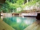 【1回無料サービス】温泉入浴11回チケット