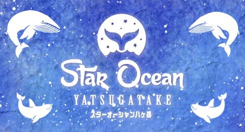 [終了]スターオーシャン八ヶ岳2017~雪の天空テラス~[日帰りプラン/現地発着]