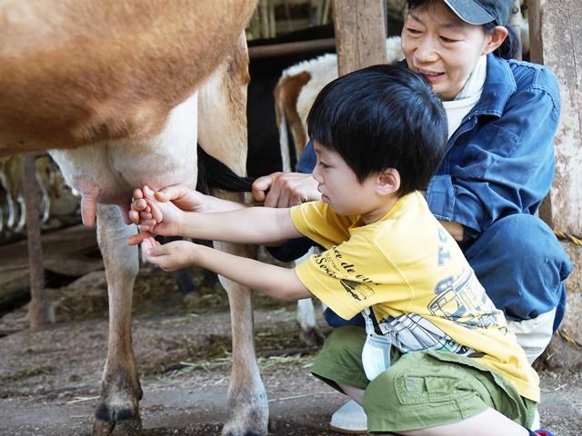 [終了]家族で「生産牧場」ならではの本格的な牧場体験を![現地発着/日帰り/神奈川/旅いくセレクト]