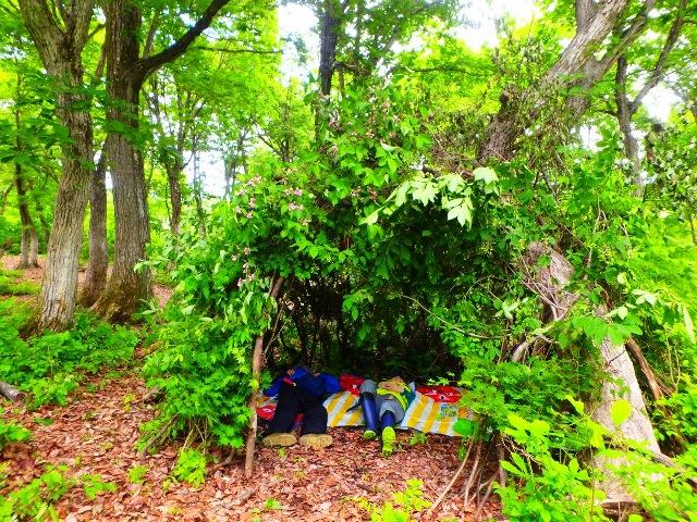 [終了]妙高高原でサマーキャンプ!~森ガキになってわんぱく自然児体験~森の中で秘密基地づくりと源流探検&野外炊飯!~[東京発着/2泊3日/子どもキャンプ/夏休み/新潟/募集型企画旅行/旅いくオリジナル]