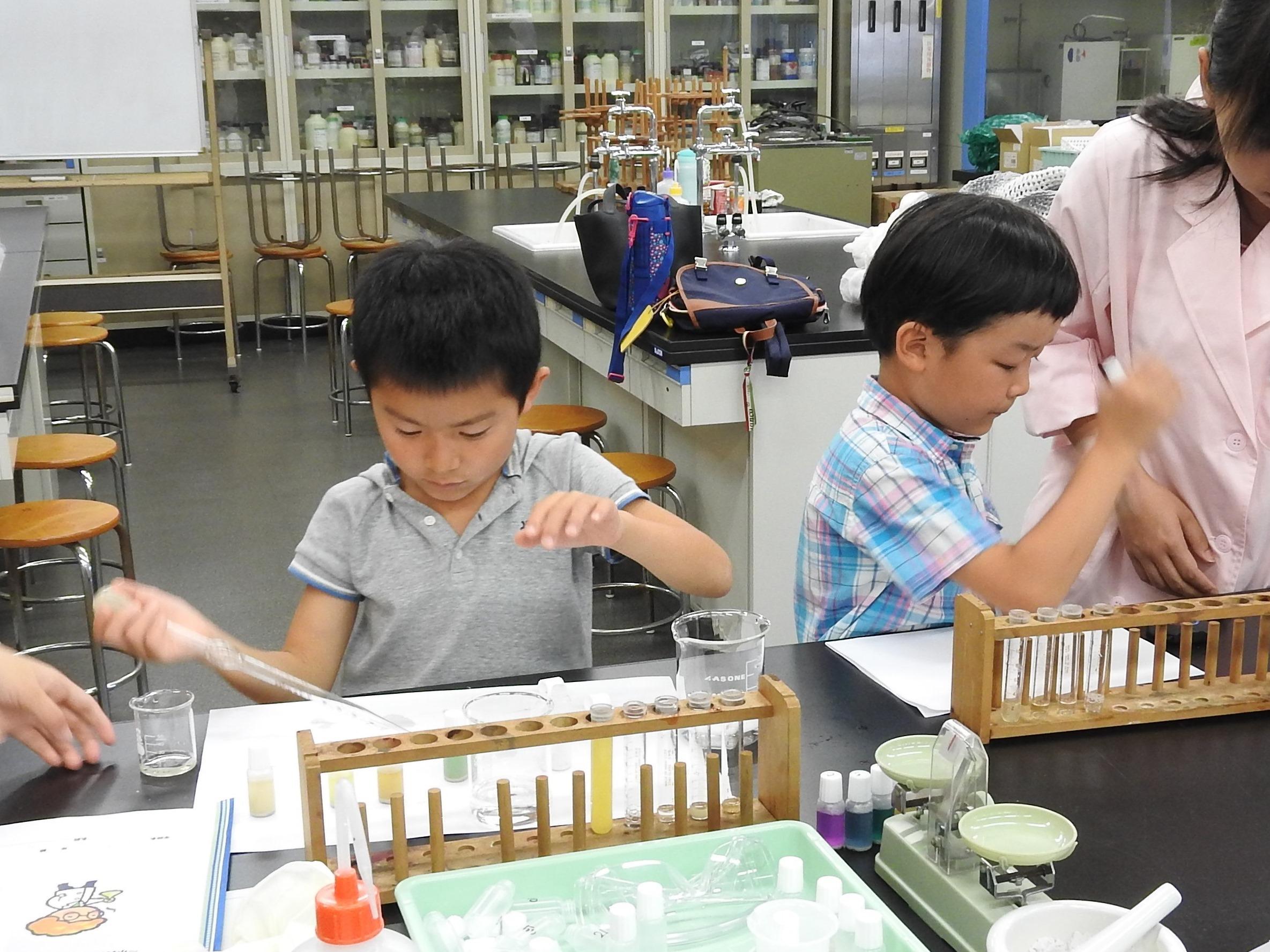 [終了]≪14時開催≫大学で自由研究!水質実験に挑戦しよう![日帰りプラン/現地発着]