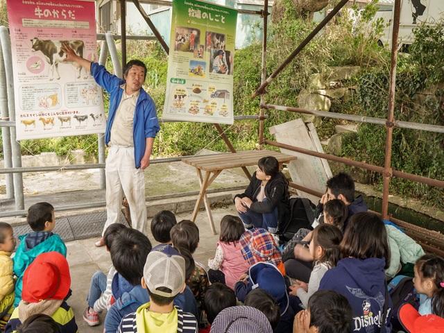 横須賀唯一の「生産牧場」でホンモノ酪農体験!関口牧場で牛のヒミツを学ぼう!