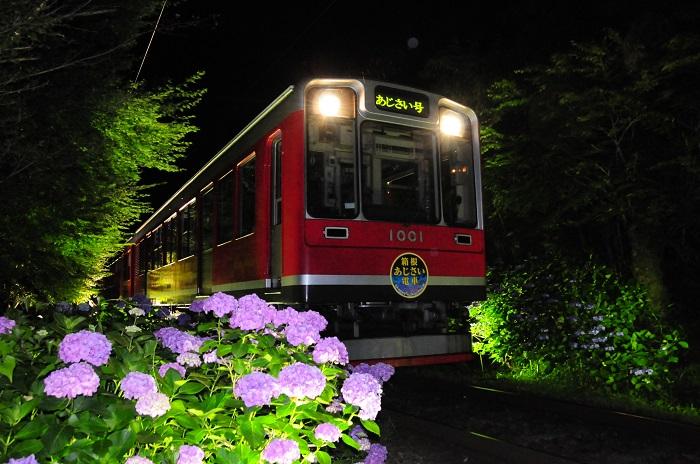 JTB専用車両で楽しむ♪箱根登山電車『夜のあじさい号』乗車プラン