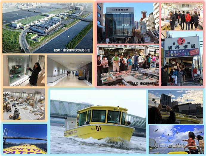 豊洲&築地市場見学ガイドツアー